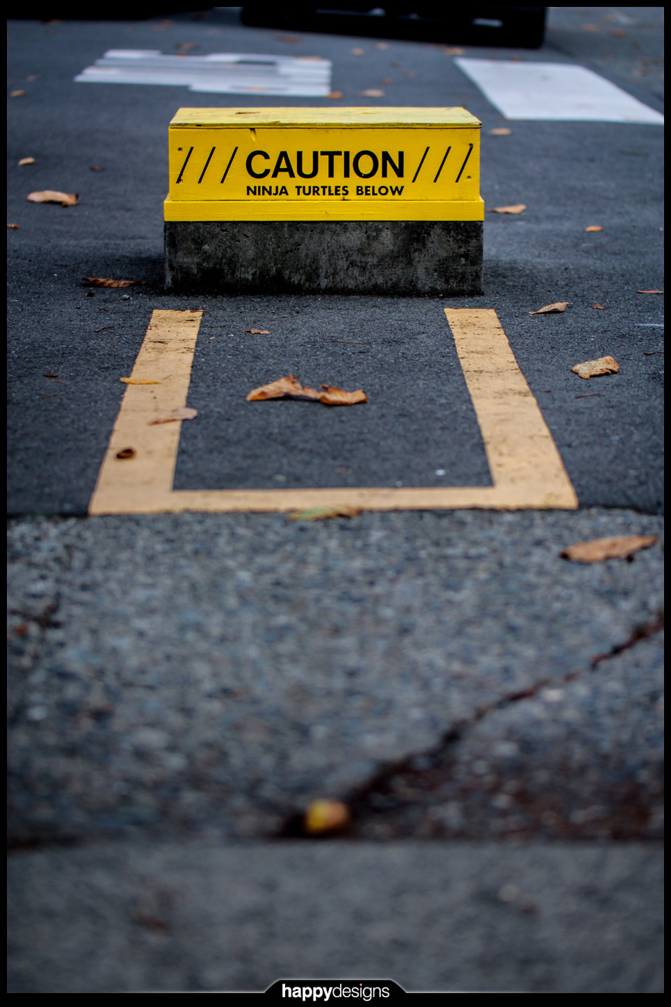 20121113 - Caution-ninja turtles below
