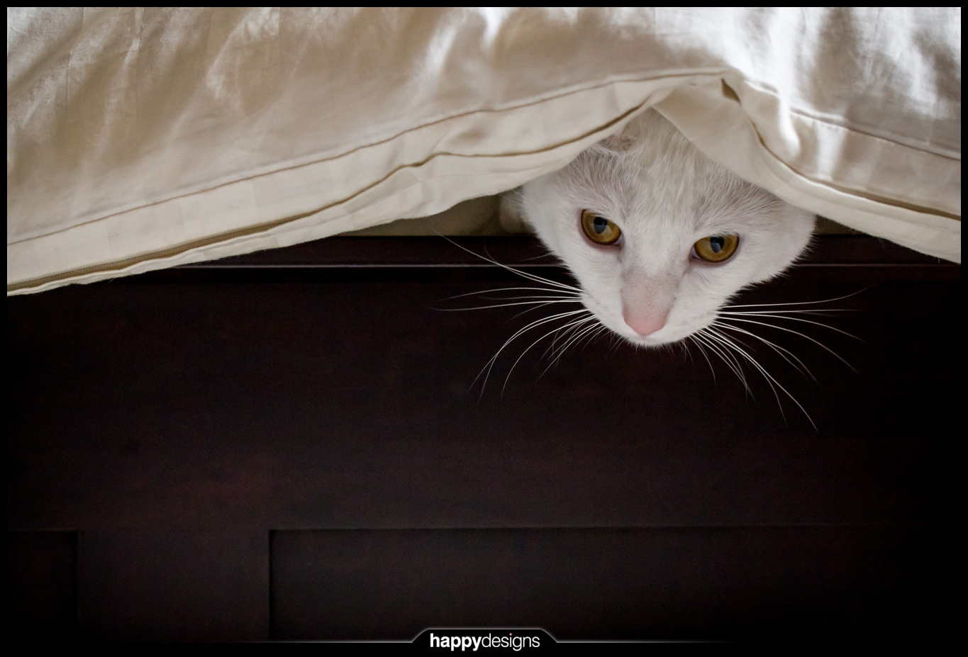 20131001 - Dasher under the covers