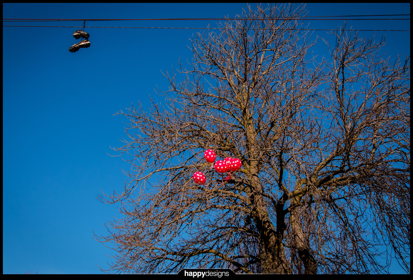 20150106 - balloons in a tree-0001