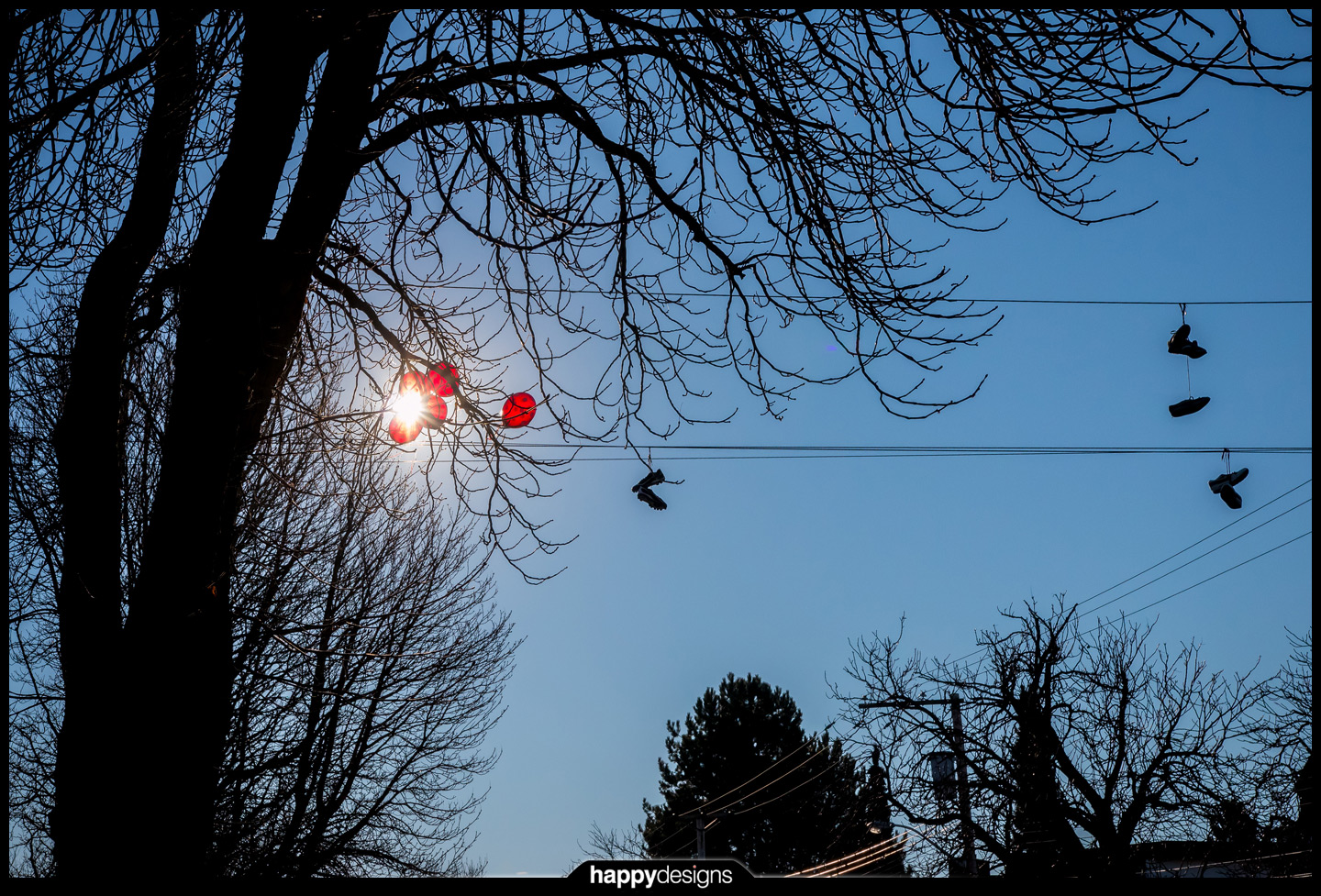 20150106 - balloons in a tree-0002