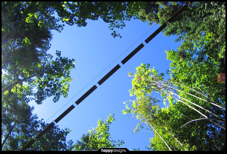 20060905 - WildPlay - TreeGO